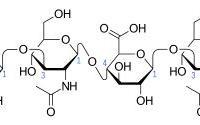 水光玻尿酸原液怎么用